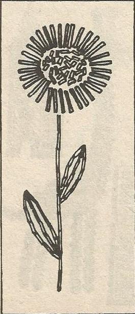 Мозаика из спичек. Цветок