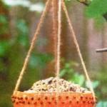 кормушка из тыквы для птиц